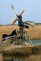 """Europe/France/Pays de la Loire/85/Vendée/Marais breton-vendéen/Centre du Daviaud/La Barre-de-Monts: Ecomusée vendéen - Moulin à """"sassor"""""""
