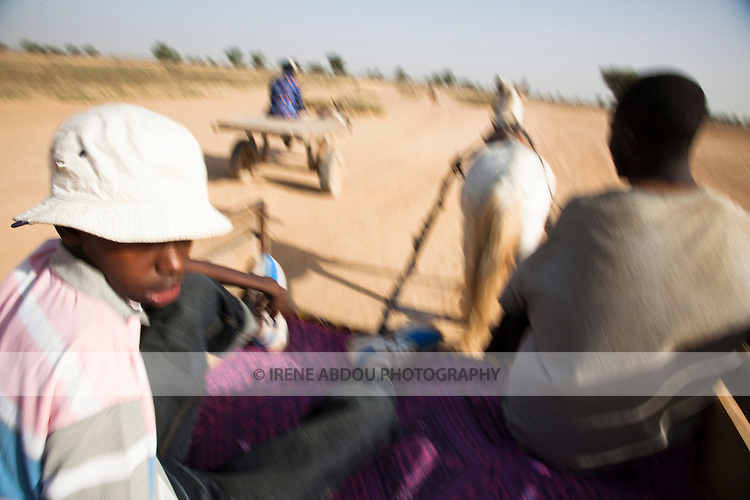 A donkey cart travels the well-worn path from the historic town of Djenne to the nearby Fulani village of Senosa, Mali.