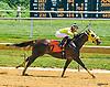 Likeuasafriend winning at Delaware Park on 8/15/16