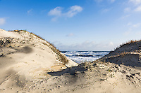 Dunes and ocean at Cape Hatteras National Seashore, Outer Banks, North Carolina, USA