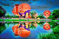 Balloon Fest in Centralia, IL on Aug 20-22, 2010.