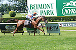 Dealbata (IRE) with Ramon Dominguez win the $90,000 Mohegan Sky Stakes on the inner turf, going 1 1/16, for 3-year old fillies and mares at Belmont.  Trainer Chad Brown.  Owner Martin S. Schwartz.