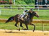 La Casadora winning at Delaware Park on 8/15/16