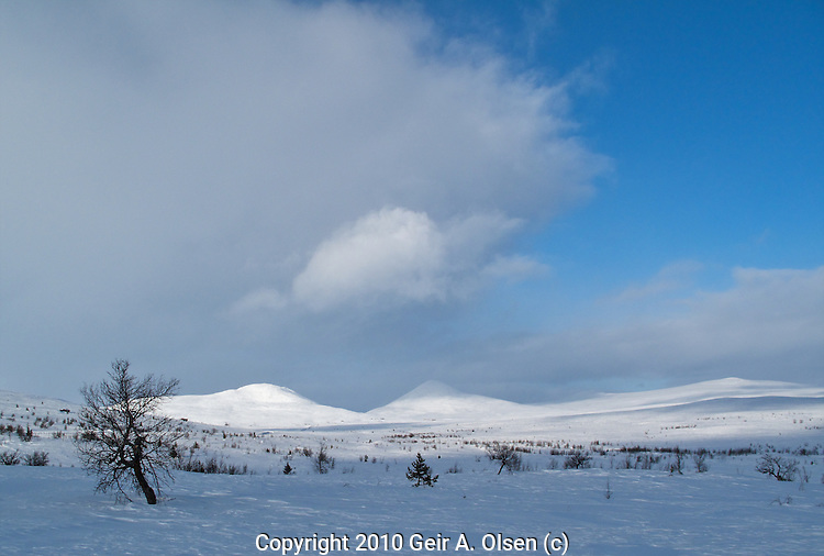 Skiing at Venabygdsfjellet in late winter