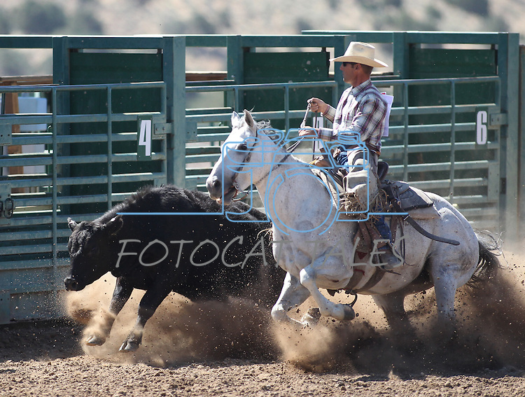 Jake Powers competes in the ranch horse class slack event at the Minden Ranch Rodeo on Saturday, July 23, 2011, in Gardnerville, Nev. .Photo by Cathleen Allison
