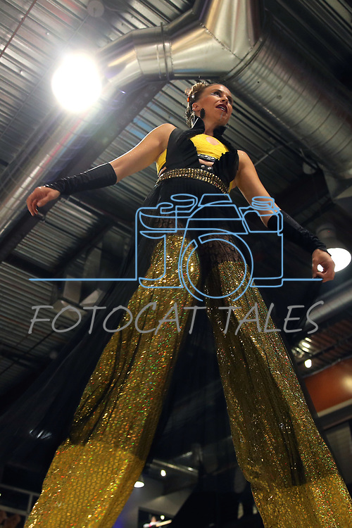 Rori from Rori & Vinnie Reno Tahoe Unified Flow, performed as they joined Dozens of artists from around the state of Nevada who performed or demonstrating their crafts at the annual Capital Collage in Carson City, Nev., on Friday, October 27, 2017. <br /> Photo by Lance Iversen/Nevada Momentum