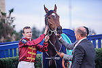Just The Judge (IRE)(3) with Jockey Jamie P. Spencer after winning at the E. P. Taylor Stakes at Woodbine Race Course in Toronto, Canada on October 19, 2014.