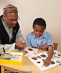 8 year old boy sorting and classifying rock collection using  illustrations in book vertical with father