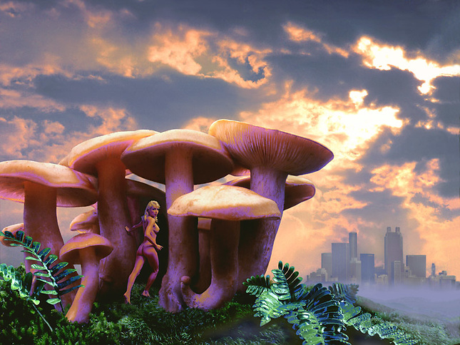 Nude lady in mushroom forest