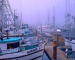 Foggy Harbor, Crescent City, California