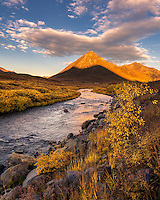 Colorful fall palatte in late afternoon light along the foothills of the Tombstone Range, Yukon Territory.
