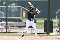 Oakland Athletics outfielder Jameson Hannah (53) at bat during an exhibition game against Team Italy at Lew Wolff Training Complex on October 3, 2018 in Mesa, Arizona. (Zachary Lucy/Four Seam Images)
