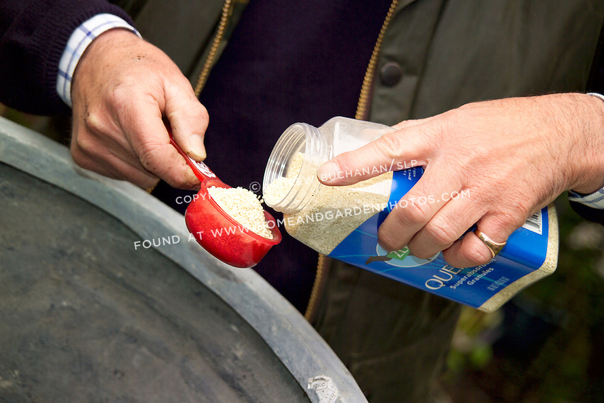 British clematis expert, Raymond Evison, of the Guernsey Clematis Nursery, adds water absorbing granules to a container.