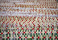 Preparations for the Remembrance Day service at Westminster Abbey. Hundreds of crosses with poppies are being laid in the grounds of the abbey, Westminster, London on November 4th 2020 <br /> <br /> Photo by Keith Mayhew