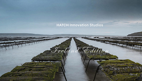 The programme is being run by Hatch and supported by the European Maritime and Fisheries Fund