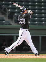 Outfielder Taylor Johnson (23) of the Furman University Paladins hits in a game against the Northwestern Wildcats on Saturday, February 16, 2013, at Fluor Field in Greenville, South Carolina. The game was cancelled in the fifth inning due to snow. (Tom Priddy/Four Seam Images)