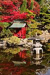 Petite Japanese Garden in the City of Tacoma, Washington's Point Defiance Park with Shrine and Torii donated by Tacoma's sister city of Kikura, Japan.