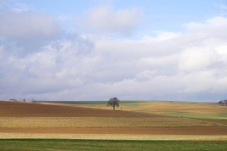 Europa, DEU, Deutschland, Rheinland-Pfalz, Saargau, Agrarlandschaft, Baum, Feld, Acker, Himmel, Wolken, Kategorien und Themen, Natur, Umwelt, Landschaft, Jahreszeiten, Stimmungen, Landschaftsfotografie, Landschaften, Landschaftsphoto, Landschaftsphotographie, Tourismus, Touristik, Touristisch, Touristisches, Urlaub, Reisen, Reisen, Ferien, Urlaubsreise, Freizeit, Reise, Reiseziele, Ferienziele<br /> <br /> [Fuer die Nutzung gelten die jeweils gueltigen Allgemeinen Liefer-und Geschaeftsbedingungen. Nutzung nur gegen Verwendungsmeldung und Nachweis. Download der AGB unter http://www.image-box.com oder werden auf Anfrage zugesendet. Freigabe ist vorher erforderlich. Jede Nutzung des Fotos ist honorarpflichtig gemaess derzeit gueltiger MFM Liste - Kontakt, Uwe Schmid-Fotografie, Duisburg, Tel. (+49).2065.677997, <br /> archiv@image-box.com, www.image-box.com]