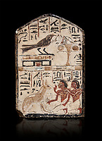 "Ancient Egyptian stele didicated to the swallow and cat by Nebra, limestone, New Kingdom, 19th Dynasty, (1292-1190 BC), Deir el-Medina, Egyptian Museum, Turin. black background. Drovetti Cat No 1591.<br /> <br /> In the top register of this votive stele a swallow  (Hirundinidae) is shown perched on top of a shrine. An offering table is placed in front of it on the right side. The bird is called ""the good swallow"". In the lower register Nakhamun and Khay, Nebre's two sons, kneel in adoration in front of a large cat. They both hold a bouquet in their right hand, the left hand is raised in adoration before the good cat"" (Houlihan,1996,87). The swallow and the cat both represent two minor deities, Menet and Tamit, who are  closely connected with the region of the Theban necropolis. It is unusual that this stele has been dedicated by Nebre, the royal craftsman, without him being depicted."