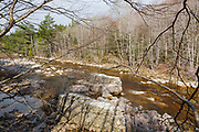 Remnants of trestle No. 17 along the old East Branch & Lincoln Railroad (1893-1948) in the Pemigewasset Wilderness of Lincoln, New Hampshire. This trestle spanned the East Branch of the Pemigewasset River near logging Camp 17.