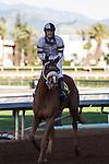 February 14, 2015: Warren's Veneda with Tyler Baze up win the Grade II Santa Maria Stakes at Santa Anita Park in Arcadia, California. Zoe Metz/ESW/CSM