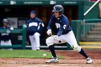 Joey Winiecki (11) of the Oral Roberts Golden Eagles lays down a bunt during a game against the /m/ on March 27, 2011 at Hammons Field in Springfield, Missouri.  Photo By David Welker/Four Seam Images