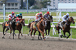 January 16, 2016: Scenes from the Louisiana Stakes race at the Fairgrounds race course in New Orleans Louisiana. Steve Dalmado/ESW/CSM