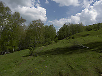 MT_LOCATION_30631