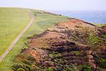 Image Ref: CA946<br /> Location: Bushrangers Bay Track<br /> Date of Shot: 07.09.19