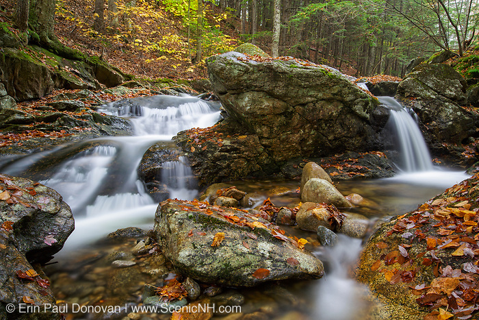 Talford Brook in Thornton, New Hampshire during the autumn months. This area was logged during the Woodstock & Thornton Gore Railroad era (1909-1914).
