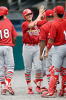 Johnson City shortstop Pete Kozma (27) is congratulated by his teammates following his first professional home run in the 1st inning versus Princeton at Hunnicutt Field in Princeton, WV, Friday, August 10, 2007.