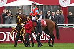 October 07, 2018, Longchamp, FRANCE - Clincher with Yutaka Take up at the parade for the Qatar Prix de l'Arc de Triomphe (Gr. I) at  ParisLongchamp Race Course  [Copyright (c) Sandra Scherning/Eclipse Sportswire)]