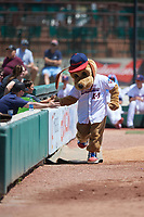 Jacksonville Jumbo Shrimp Southpaw high fives young fans during a Southern League game against the Tennessee Smokies on April 29, 2019 at Baseball Grounds of Jacksonville in Jacksonville, Florida.  Tennessee defeated Jacksonville 4-1.  (Mike Janes/Four Seam Images)