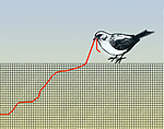 Concept of a bird pulling at a graph that resembles a worm depicting struggle