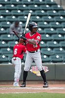 Troy Stokes Jr. (15) of the Carolina Mudcats at bat against the Winston-Salem Dash at BB&T Ballpark on May 21, 2017 in Winston-Salem, North Carolina.  The Mudcats defeated the Dash 3-0 in 10 innings.  (Brian Westerholt/Four Seam Images)
