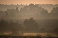 Europe/France/Normandie/Basse-Normandie/61/Orne/Env de la Mancelière/Montmureau : Lever de brume sur un village  // Europe / France / Normandy / Lower Normandy / 61 / Orne / Env de la Mancelière / Montmureau: Mist rising over a village