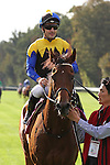 October 02, 2016, Chantilly, FRANCE - Makahiki with Christophe-Patrice Lemaire up at the Qatar Prix de'l Arc de Triomphe (Gr. I) at  Chantilly Race Course  [Copyright (c) Sandra Scherning/Eclipse Sportswire)