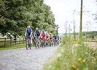 Dries Devenyns (BEL/Deceuninck - Quick Step) leading teh peloton over the cobbles<br /> <br /> Grote Prijs Marcel Kint 2021<br /> One day race from Zwevegem to Kortrijk (196km)<br /> <br /> ©kramon