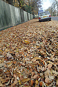 A car is marooned in a sea of fallen leaves which cover the pavement and block the gutter on a street in the London Borough of Barnet