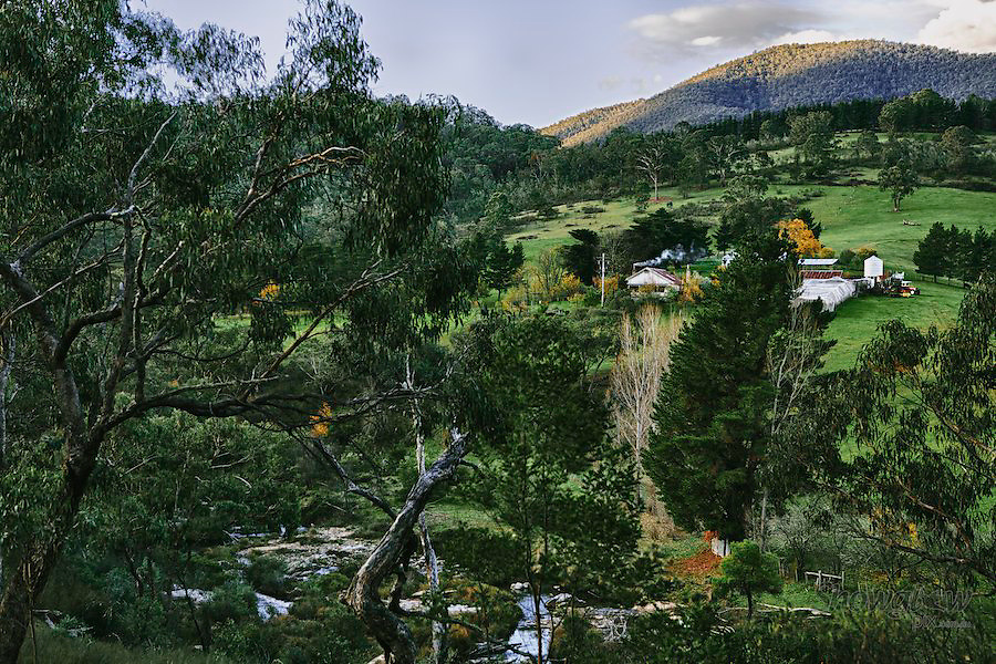 Image Ref: HC094<br /> Location: High Country, Victoria<br /> Date: 25th May 2014