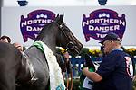 Thoroughbred Racing 2010 - Northern Dancer Turf