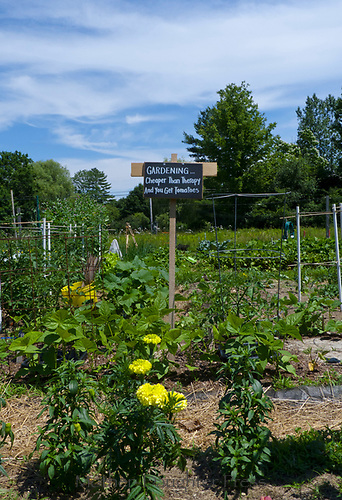 """sign in garden, """"Gardening …. cheaper than therapy and you get tomatoes"""", Maine"""