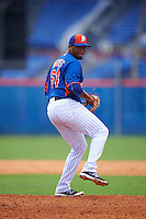 New York Mets pitcher Sixto Torres (64) during an Instructional League game against the Miami Marlins on September 29, 2016 at the Port St. Lucie Training Complex in Port St. Lucie, Florida.  (Mike Janes/Four Seam Images)