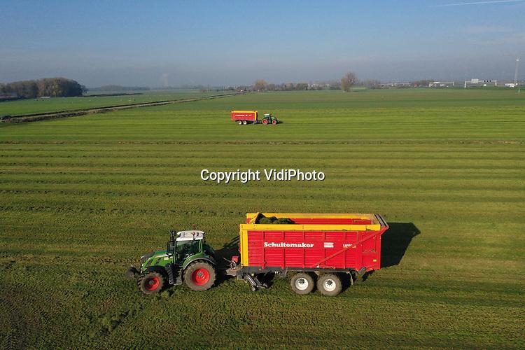 Foto: VidiPhoto<br /> <br /> VALBURG – Op een weiland langs de A50 bij knooppunt Valburg wordt dinsdag door loonbedrijf Gerritsen uit Heelsum de laatste snede gras binnengehaald voor melkveehouder Vermeulen uit Herveld. Loonwerkers en boeren zijn deze week, dankzij het droge weer, nog volop bezig met maaien en oogsten van gras. En dat is uitzonderlijk laat in het seizoen. Omdat het gras dankzij de relatief hoge temperaturen nog groeit bevat het gras ook nog voldoende voedingswaarde. Ondanks de late laatste snede kampen boeren in de Betuwe met een tekort aan wintervoorraad. De agrarische sector hoopt daarom op een zachte winter en een snelle eerste snede in de lente.