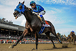 August 29, 2015 :Private Zone, ridden by Martin Pedroza, wins the Forego Stakes on Travers Stakes Day in Saratoga Springs, NY. Bob Mayberger/ESW/CSM