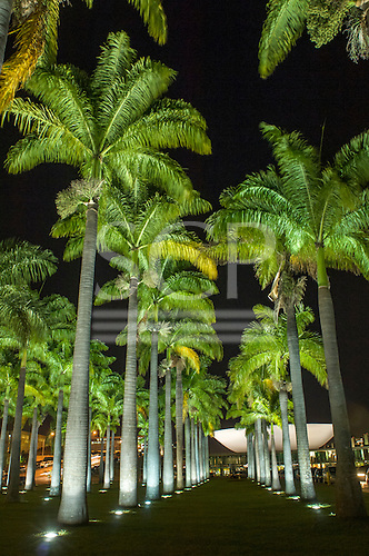 Brailia, DF, Brazil. Avenue of palms leading to the dish of the Congress building with night time illuminations.