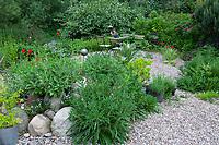 Unser Naturgarten in Hammer, Garten, insektenfreundlicher Garten, vogelfreundlicher Garten, blütenreich, Wildblumen, Wildblumengarten, Terrasse, Terasse, Kiesterasse, Sitzgelegenheit zwischen Blumen, Sitzplatz