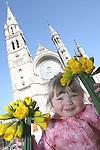 Daffodil Day 2009