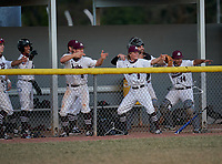 Braden River Pirates Cesar Valera (8), Carson Goda (5), Andrew Nordland (9), Brady Jernigan (4), and Jorge Ortiz (14) celebrate during a game against the Venice Indians on February 25, 2021 at Braden River High School in Bradenton, Florida. (Mike Janes/Four Seam Images)