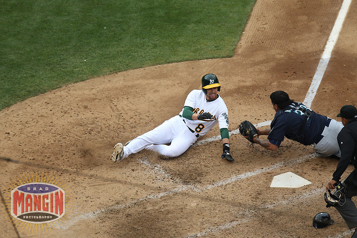 OAKLAND, CA - JUNE 15:  Jed Lowrie #8 of the Oakland Athletics is tagged out at home plate by Seattle Mariners catcher Henry Blanco #33 during the game at O.co Coliseum on Saturday June 15, 2013 in Oakland, California. Photo by Brad Mangin